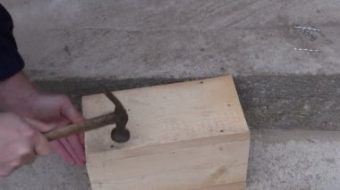 Hammering nail in wooden bird house nesting-box — Stock Video