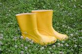 Pair rain rubber yellow boots on grass — Stock Photo