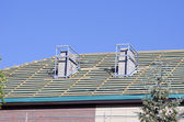 House  repair roof and chimney  new construction — Stockfoto