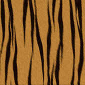 Tiger fur (skin) background or texture — Stock Photo