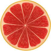 Rodaja de pomelo aislado sobre fondo blanco — Foto de Stock