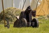 Vecchio cannone d'epoca — Foto Stock