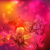 Rainbow orchid flowers, stars and bright background — Stock Photo