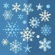 Set of decorative Christmas snowflake in vector — Stock Vector #37020623