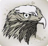Buzzard hawk, hand drawing. Vector illustration. — Stockvector