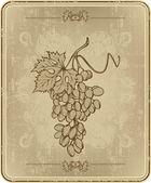 Menu com uvas, mão-desenho. ilustração vetorial. — Vetor de Stock