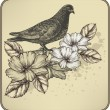 Vintage background with bird dove and blooming roses. Vector ill — Stock Vector