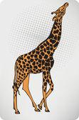 Animal giraffe. Vector illustration. — Stockvector