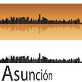 Asuncion skyline — Stock Vector