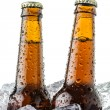 Beers on ice — Stock Photo #13808238