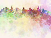 Sao Paulo skyline in watercolor background — Stock Photo