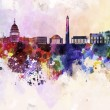 Stock Photo: Washington DC skyline in watercolor background