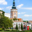 Mikulov, Czech Republic, August 10, 2012: Church of the St. Wenceslas. The crypt contains bones 2000 , members of the Dietrichstein and Lobkovice families. - Stock Photo