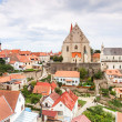 Stock Photo: Panoramof Znojmo. Church of St. Nicholas and St. Wenceslas Chapel, Czech Republic.