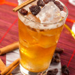 Yellow drink with raisins and cinnamon — Stock Photo #22036203