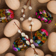 Colorful easter eggs and catkins — Photo