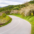 Asphalt road in mountains — Stock Photo
