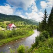Rural view with river and single house in Bieszczady mountains, Poland — Stock Photo #29634511