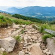 Bieszczady mountains, Poland View of Tarnictrail — Stock Photo #29634603