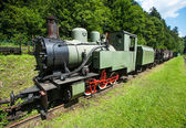 Narrow-gauge railway, steam train in Cisna, Poland — Stock Photo