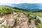 Bieszczady mountains, Poland View of Tarnica trail — Stock Photo