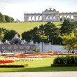 Vienna, Austria - August 31, 2013. Schonbrunn Palace garden. Gloriette-build on the sixty metre high hill. This is very good place to see a view of the city. UNESCO. — Stock Photo