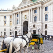 Vienna, Austria - August 30, 2013: Main entrance to Hofburg palace Horse-drawn carts waiting for tourists at the main gate to Hofburg Palace in Vienna — Stock Photo #37879505