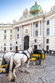 Vienna, Austria - August 30, 2013: Main entrance to Hofburg palace Horse-drawn carts waiting for tourists at the main gate to Hofburg Palace in Vienna — Stock Photo