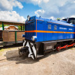 Przyslup, Poland - July 18, 2013: Blue Narrow-gauge railway, steam train. Tourist train rides in the summer from Cisna to Przyslup in Bieszczady mountains — Stock Photo #38146945