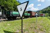 Narrow-gauge railway, steam train in Cisna, in Bieszczady mountains, Poland — Stock Photo