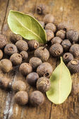 Allspice and bay leaf arrangement — Stock Photo
