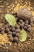 Allspice, nutmeg, mustard and bay leaf arrangement — Stock Photo