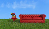 Red leather luxury sofa on grass — Stock Photo