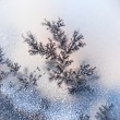 Stock Photo: Dendrite crystals macro