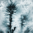 Stock Photo: Dendrite tsrystals
