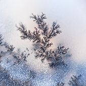 Macro cristalli dendrite — Foto Stock