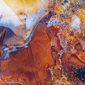 Moss Agate abstract close-up — Stock Photo