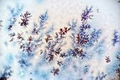 Dendrite crystals macro — Stock Photo