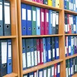 File folders, standing on the shelves — Stock Photo #12368764