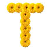 花的字母表的字母 — 图库照片