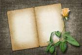 Tarjeta de invitación o felicitación con rosa amarilla — Foto de Stock