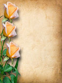 Vintage card for congratulations with yellow roses — Stock Photo