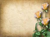 Carta d'epoca per le congratulazioni con tre rose gialle — Foto Stock