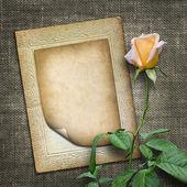 招待状または黄色いバラのお祝いカード — ストック写真