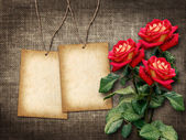 Card for invitation or congratulation with red roses — Stock fotografie