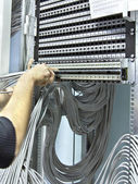 Assembly network patch panels — Stock Photo