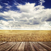 Wood floor and  agricultural fields — Stock Photo