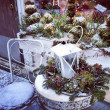 Winter decoration — Stock Photo #24044699