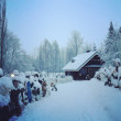 Finland, winter and snow — Stock Photo