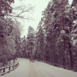 Finland, winter and snow — Stock Photo #24169781